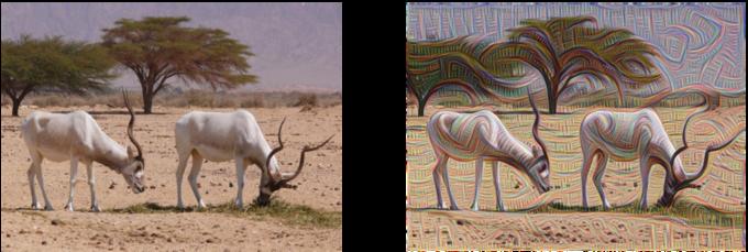 Нейронные сети Google научились «рисовать» картины . Изображение № 2.