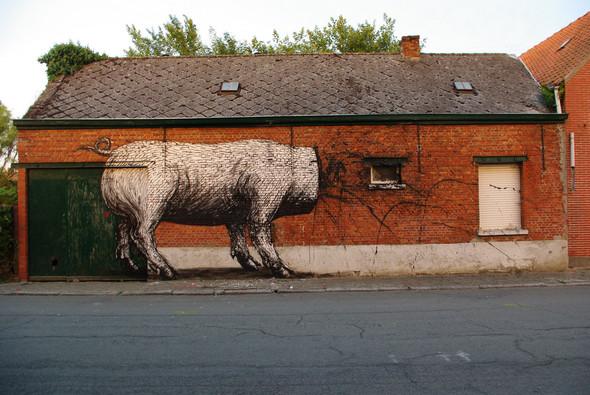 Животный стрит-арт от бельгийского граффитчика ROA. Изображение № 5.