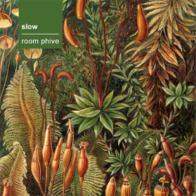 Slow – Room Phive. Изображение № 1.