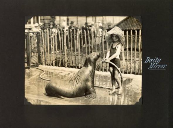 Лондонский Зоопарк 30-х. Изображение № 5.