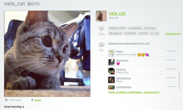 Русскоязычный web-viewer приложения Instagram начинает свою работу. Изображение № 2.