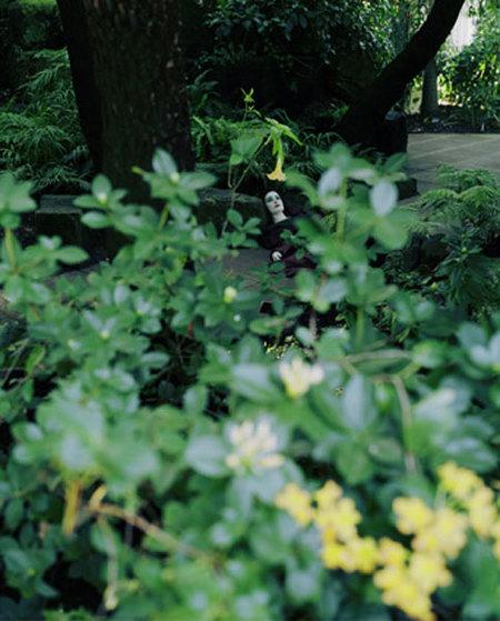 Izima Kaoru иего «Пейзаж струпом». Изображение № 26.