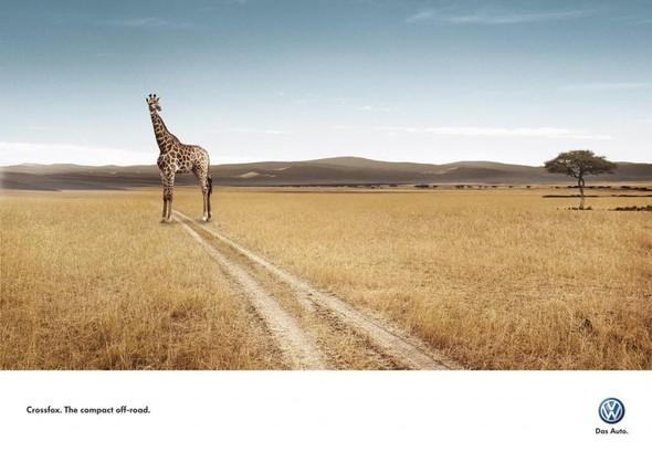 В мире животных: Герои «Мадагаскара» в мемах, рекламе и видеороликах. Изображение № 12.