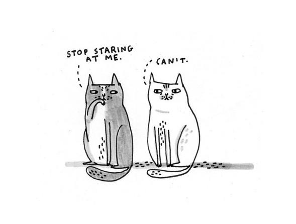 Gemma Correll и её коты. Изображение № 1.