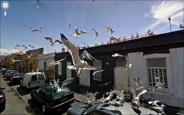 Изображение 6. Интересные уличные сцены, подсмотренные с Google Streets.. Изображение № 6.