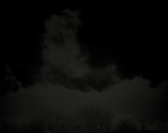 Nicholas Hughes. Изображение № 22.