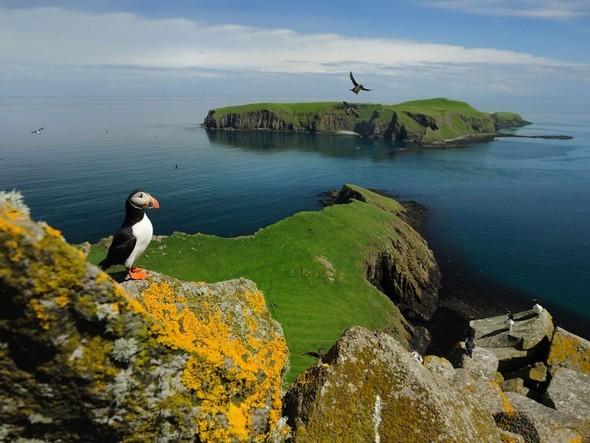 Лучшие новые снимки от National Geographic. Изображение № 31.