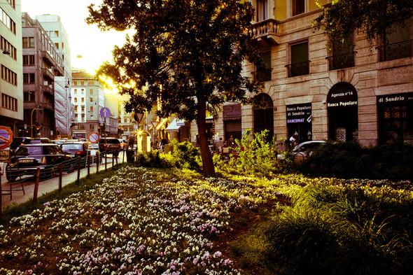 La capitale di Moda. Изображение № 4.