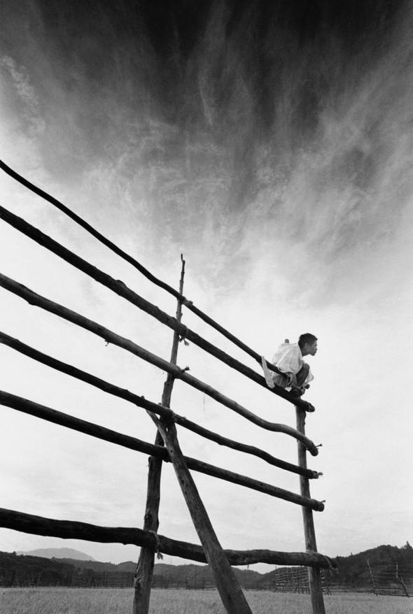 Эйко Хосоэ - фотография, как танец на грани. Изображение № 10.