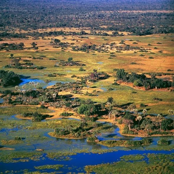 Ботсвана. Изображение № 22.