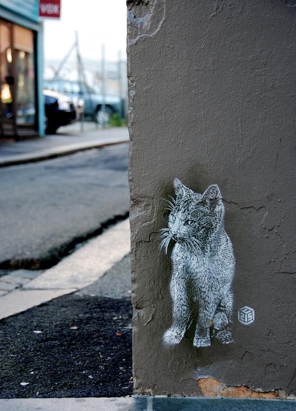 Street ArtinBergen. Изображение № 6.