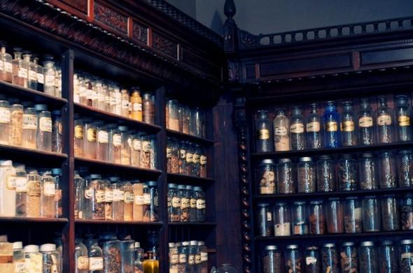 Аптека - музей в Новом Орлеане. Изображение № 2.