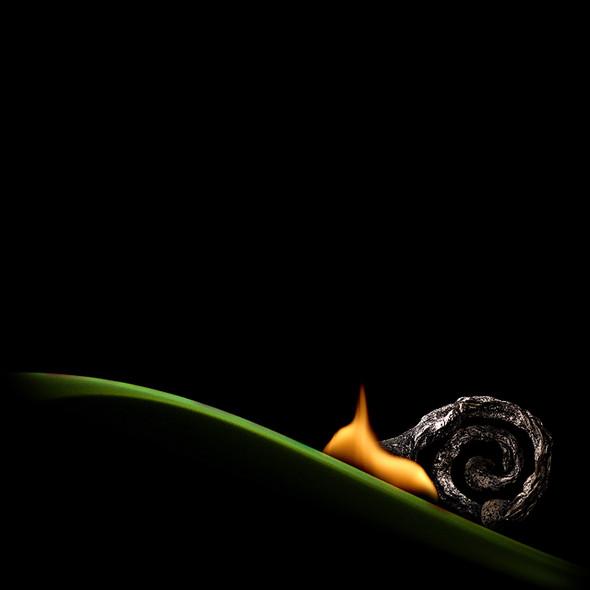 Картины из горящих спичек. Изображение № 13.