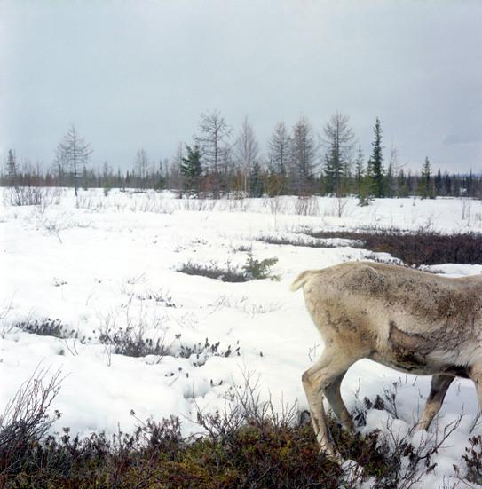 Игорь Старков: Как я стал документальным фотографом. Изображение № 16.