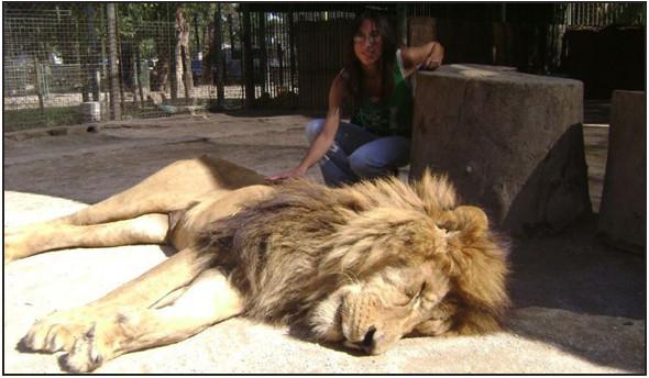 Lujan Zoo. Изображение № 4.