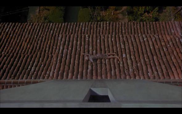 Movie-Looks: «Головокружение». Изображение № 13.
