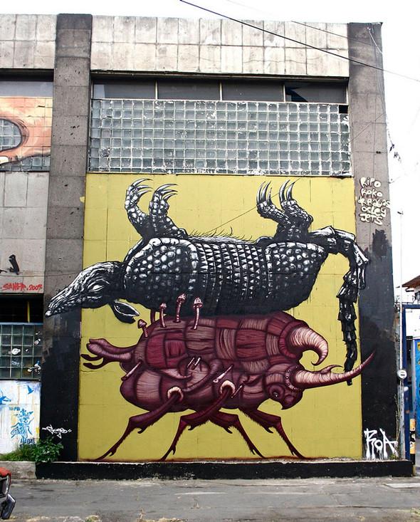 Животный стрит-арт от бельгийского граффитчика ROA. Изображение № 23.