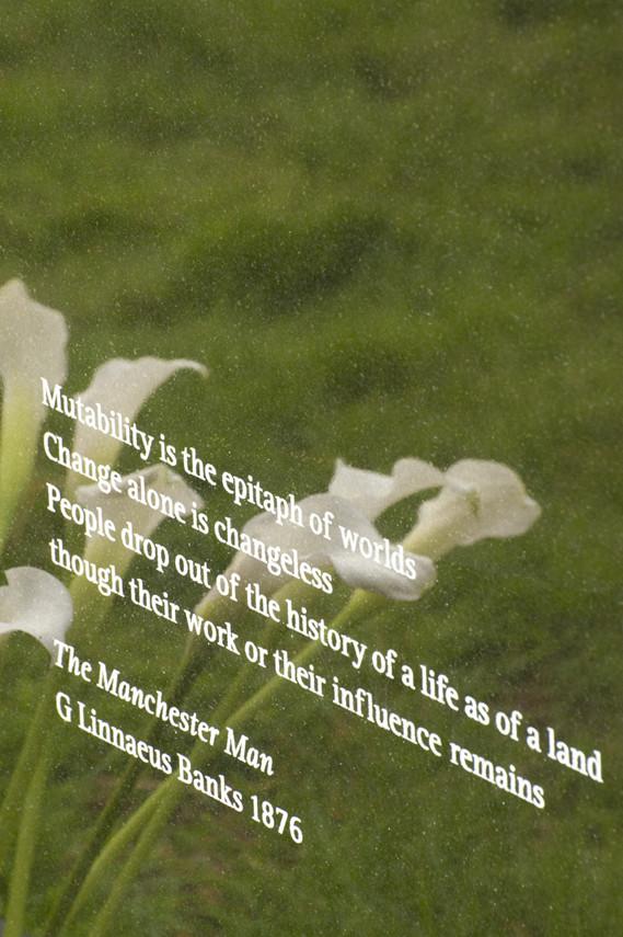 Мемориал Тони Уилсона. Изображение № 3.