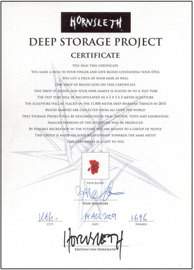 Каждый участник проекта получает сертификат. Изображение № 2.