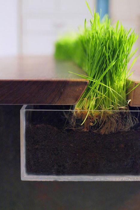 Зеленый стол. Изображение № 2.