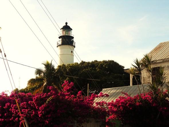 Спешите жить медленно. Ки-Уэст (Key West). Изображение № 17.