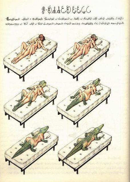 Codex Seraphinianus: книга – аномалия. Изображение № 5.