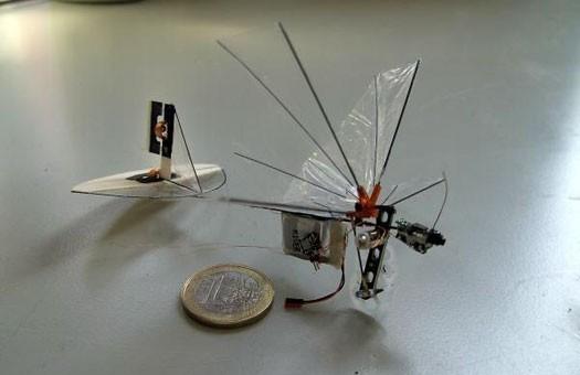 Шпионскиемини роботы-колибри будут подглядывать. Изображение № 2.