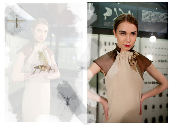Lookbook SS'12 Vera Olshvang для Bacstage showroom. Изображение № 4.