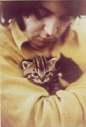 Коты и их знаменитости. Изображение № 13.