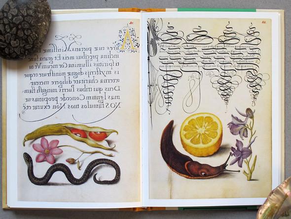 9 известных дизайнеров и художников советуют must-read книги по искусству. Изображение № 28.