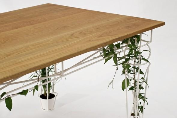 Огород под столом. Изображение № 2.