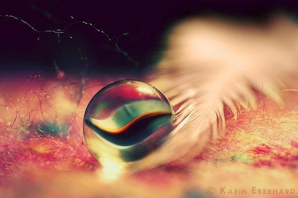 Karin Eberhard: Macro Photography. Изображение № 5.