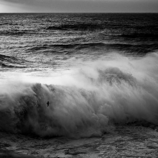 Море Alessandro Puccinelli. Изображение № 6.
