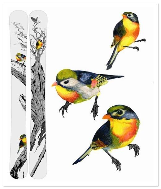 Birds Of Claire. Изображение № 40.