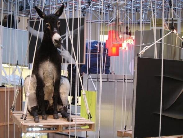 """Нью-Йоркская выставка Маурицио Каттелана """"Все"""". Изображение № 11."""
