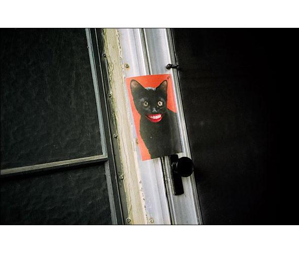 Изображение 86. 8 победителей Фотофестиваля в Нью-Йорке.. Изображение № 91.