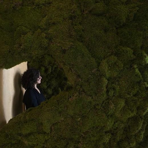 Диалог с природой: вертикальные сады. Изображение № 29.
