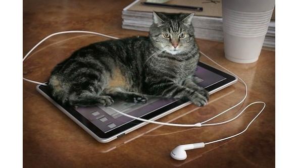 Так будет выглядеть новый планшет Apple Tablet. Изображение № 3.