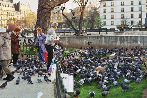 Изображение 35. Париж.. Изображение № 58.