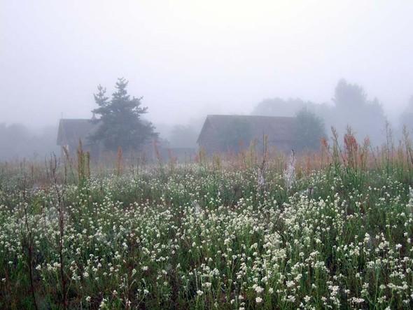 Ползком изгорода – кмечте. Изображение № 24.