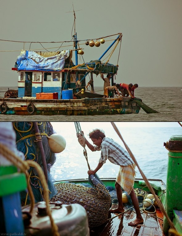 Shrimp boat MFR 646 DF GOA - Non stop. Изображение № 19.