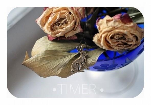 Изображение 16. TIMER.. Изображение № 16.