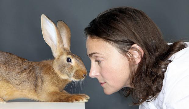 Когда конфеты стоили пенни, а бог был кроликом. Изображение № 2.