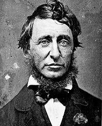 Thoreau's Cabin. Изображение № 1.