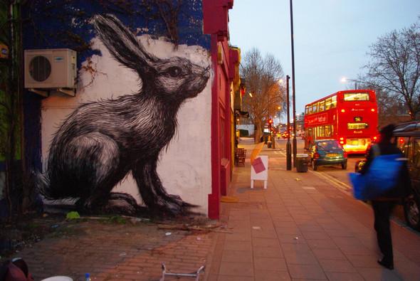 Животный стрит-арт от бельгийского граффитчика ROA. Изображение № 6.