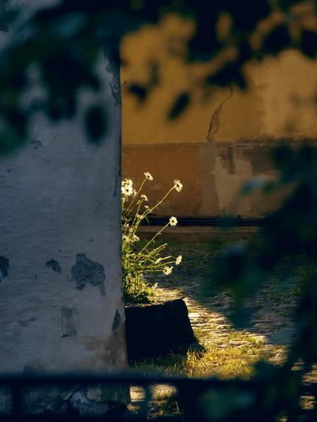 Фотограф Андрей Пушкин. Изображение № 9.