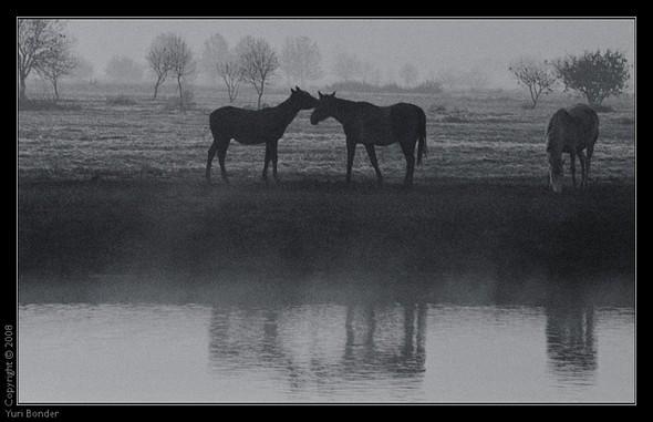 Фотохудожник Юрий Бондер. Изображение № 31.