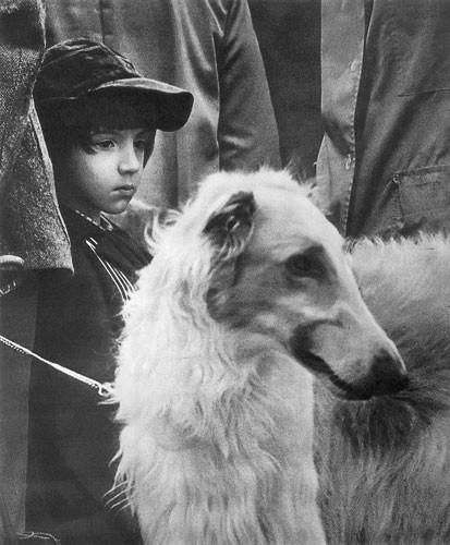 Лучшее из «Советского Фото». Изображение № 95.