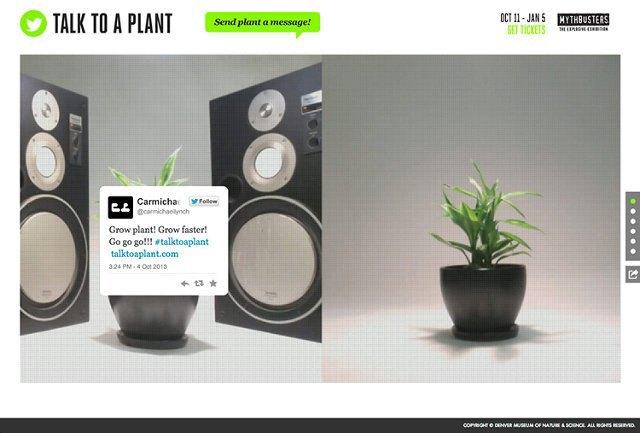 Денверский музей выращивает растение с помощью «Твиттера». Изображение № 1.