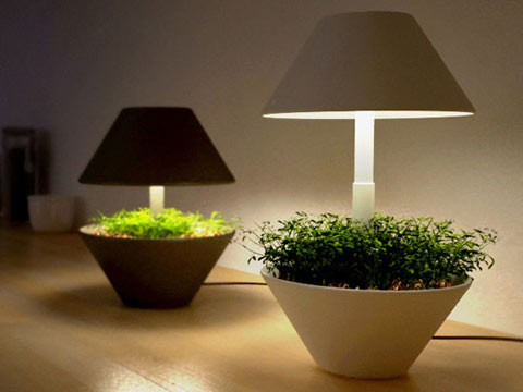 Зеленый дизайн. Изображение № 3.